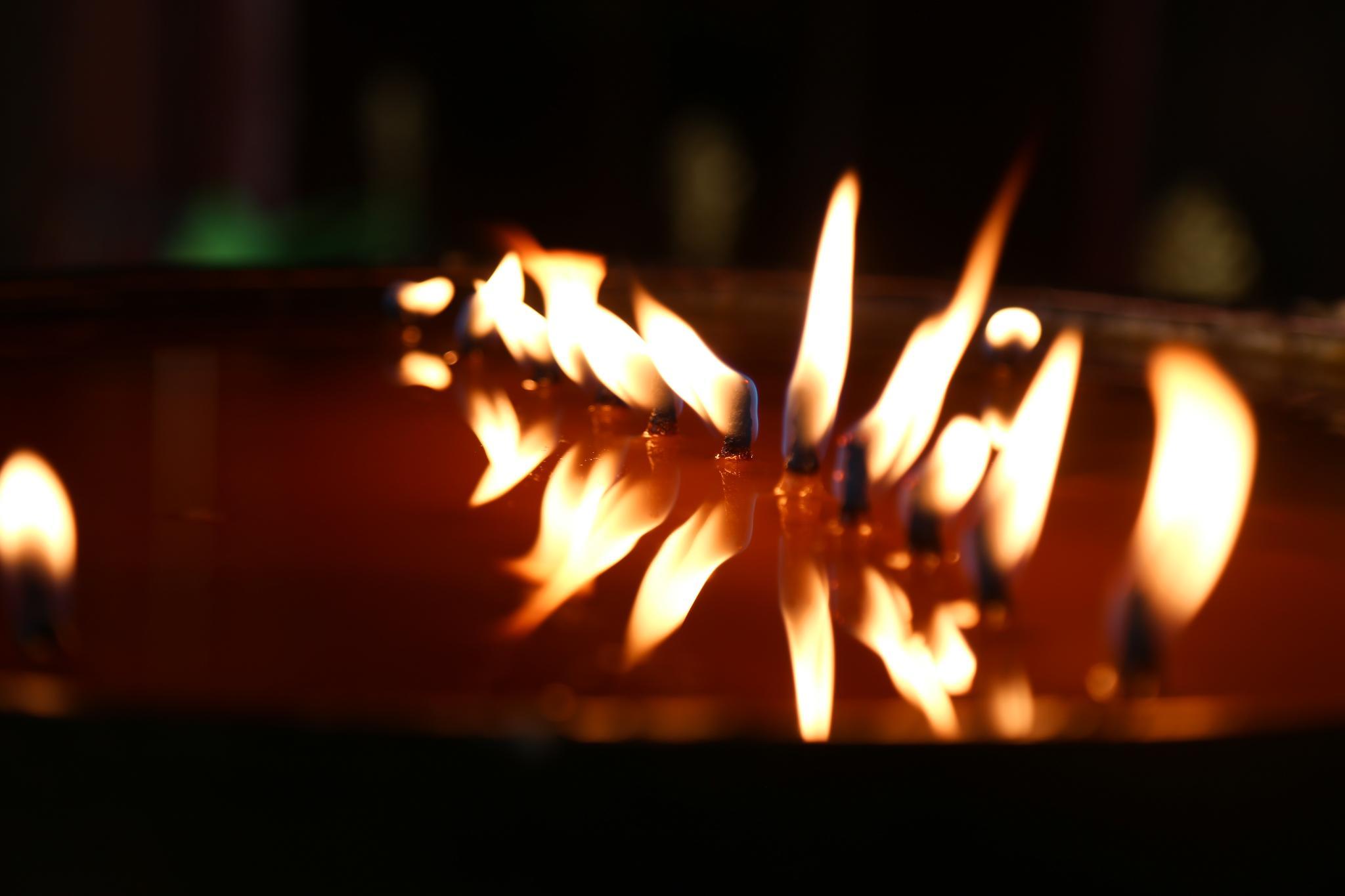 大昭寺里的油灯