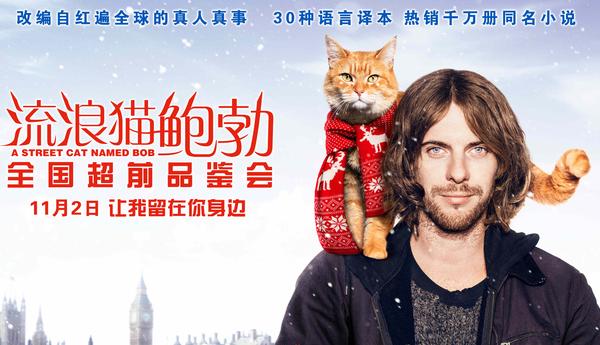 電影《流浪貓鮑勃》人氣火爆 告白宣言海報曝光引人心動