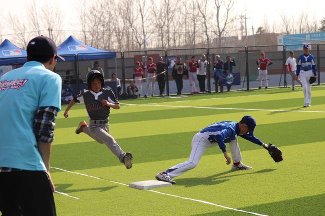 """中国棒球的""""甲子园"""""""